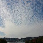 美術館からのうろこ雲