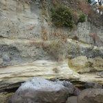 100万年前の地層「龍石海岸」