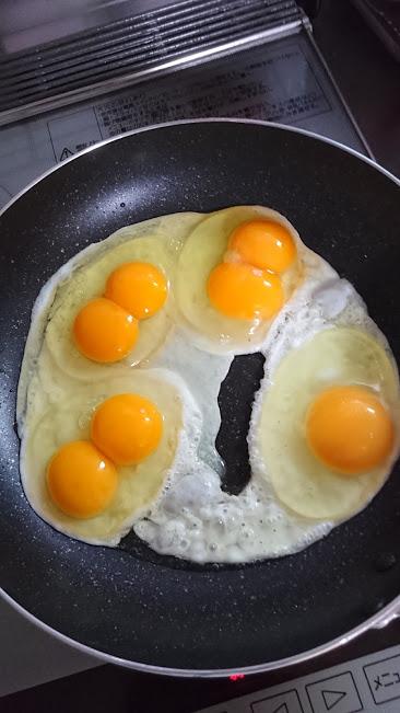 大村市の田崎養鶏場で購入した卵。4つのうち3つが双子ちゃんでした。
